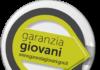 Garanzia Giovani_21secolo_emanuelemarino