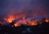 21secolo_incendio_grecia_filomena_scala