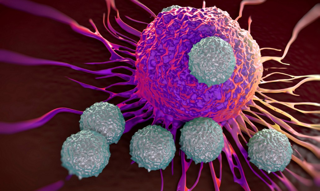 21secolo_cellule_tumorali_filomena_scala