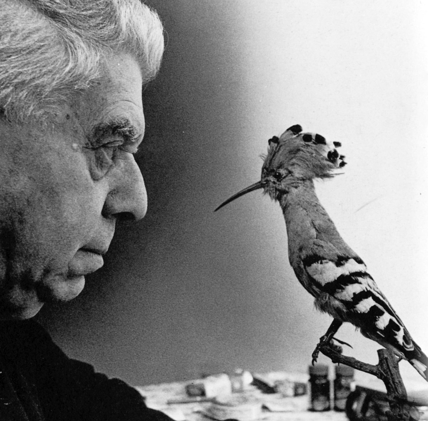 Eugenio Montale, l'uomo che indagava con la poesia | XXI SECOLO
