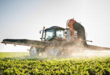 Legambiente denuncia: troppi residui nell'uso dei pesticidi