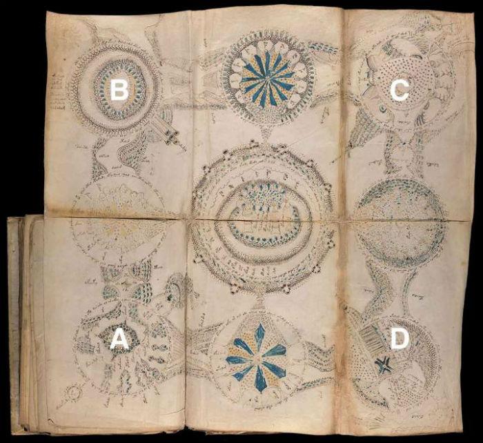 Manoscritto di Voynich