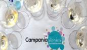 Campania Stories