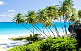 Smart working delle Barbados