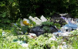 smaltimento illegale di rifiuti