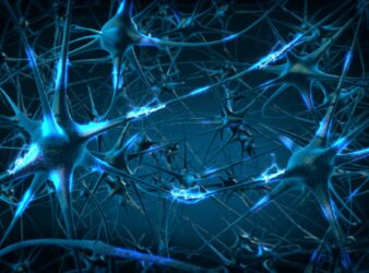 Neuroni integri in una vittima dell'eruzione di Pompei